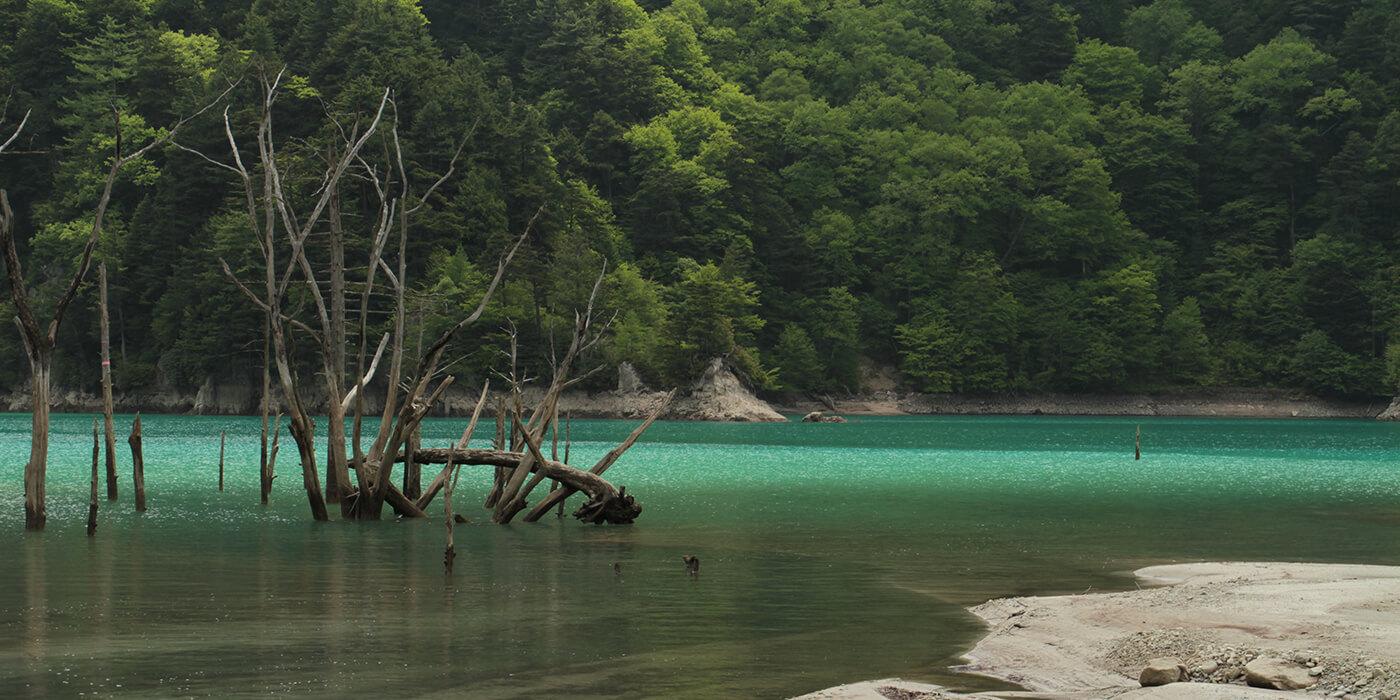 高瀬渓谷と葛温泉をめぐる秘境の旅